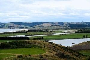 紐西蘭小鎮招新居民 被全球萬人查詢「淹沒」