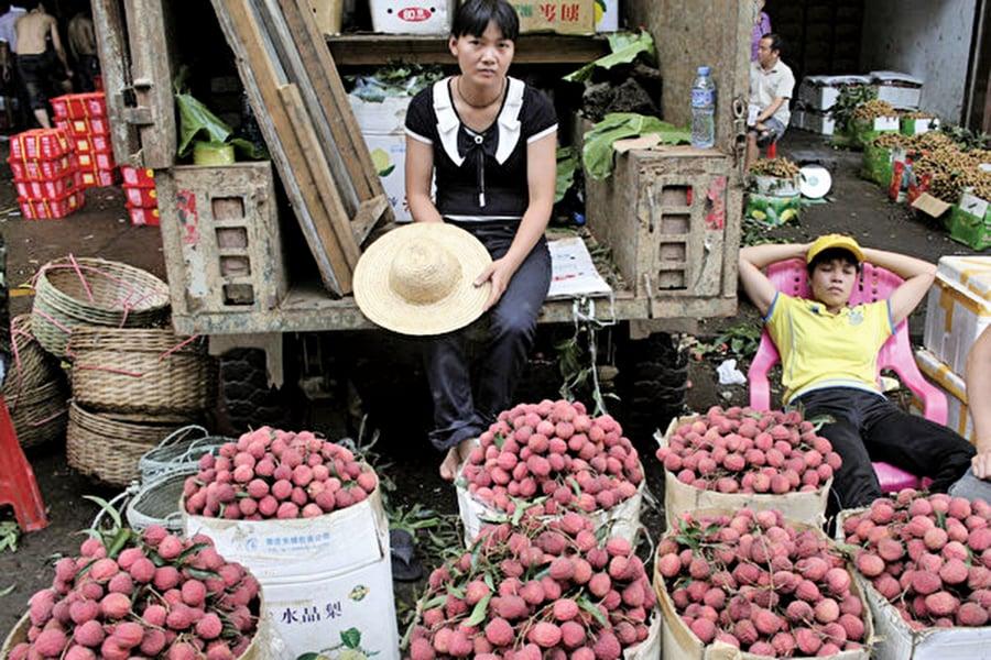 大陸水果滯銷成常態 專家分析多層原因