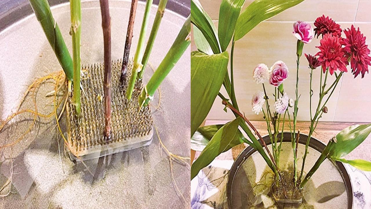 花盆1:在金屬劍山的鐵釘上長根的樹枝         花盆1 :尋真輕劍戟,招展綵衣裳