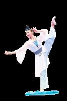 專訪「全世界中國古典舞大賽」選手王一然(下)