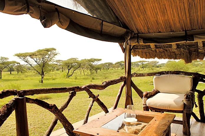 坦桑尼亞的非洲平原是塞倫蓋蒂國家公園的三大園區之一。