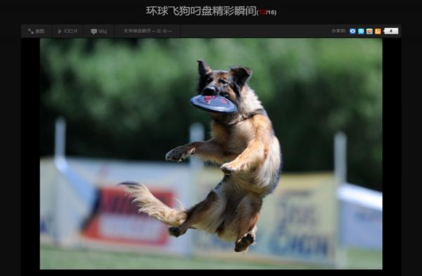 胡錫進開通其微博的第一天就開始了「甘願為黨叼飛盤」。(網頁截圖)
