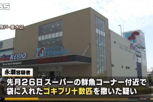 在超市「放生」蟑螂 日本女子被捕
