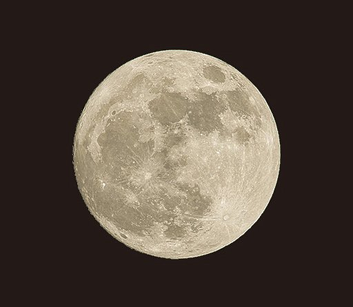 和子正〈月下傳「神韻」〉