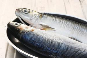 虱目魚營養豐富 六種虱目魚料理簡單易學(一)