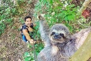 加男與樹懶自拍 牠竟揮手微笑萌翻逾百萬人