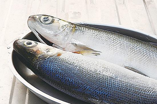 虱目魚營養豐富 六種虱目魚料理簡單易學(二)