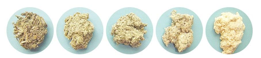 從左到右,依次為:加工的艾草(第一階段)、加工的艾草(第二階段)、粗艾絨(用於間接灸)、普通品質的艾絨(用於直接或間接灸)、優質的艾絨(用於直接灸)。(WolfgangMichel/Wikimedia Commons)