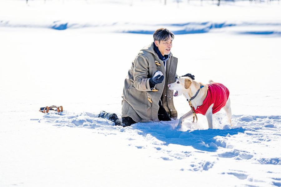 《小Q》信任感須培養 導盲犬與盲人也不例外