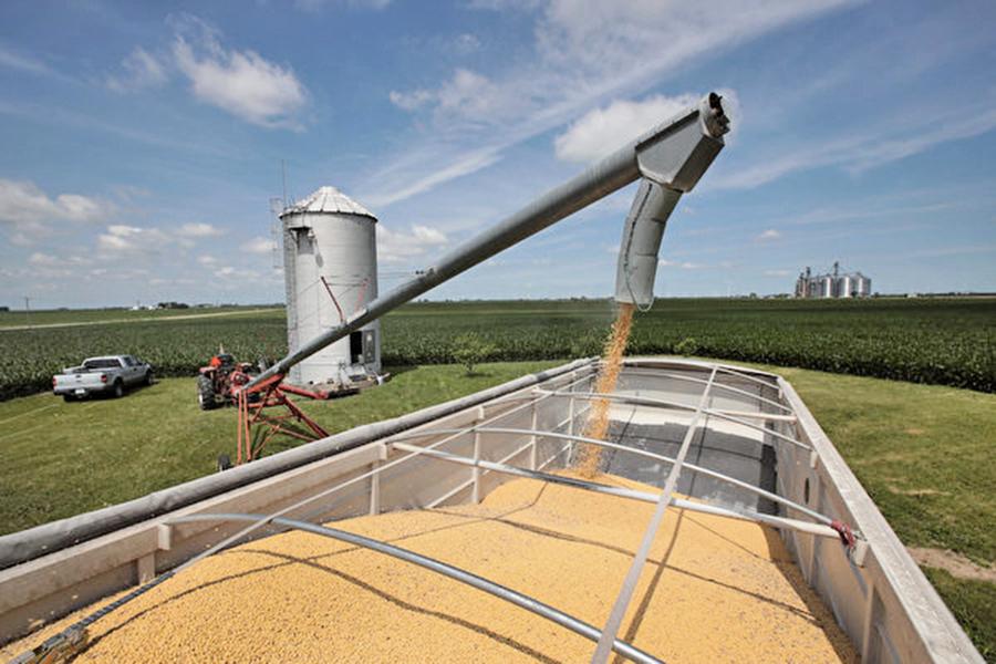 中方對幾家中國公司 豁免進口美國大豆新關稅