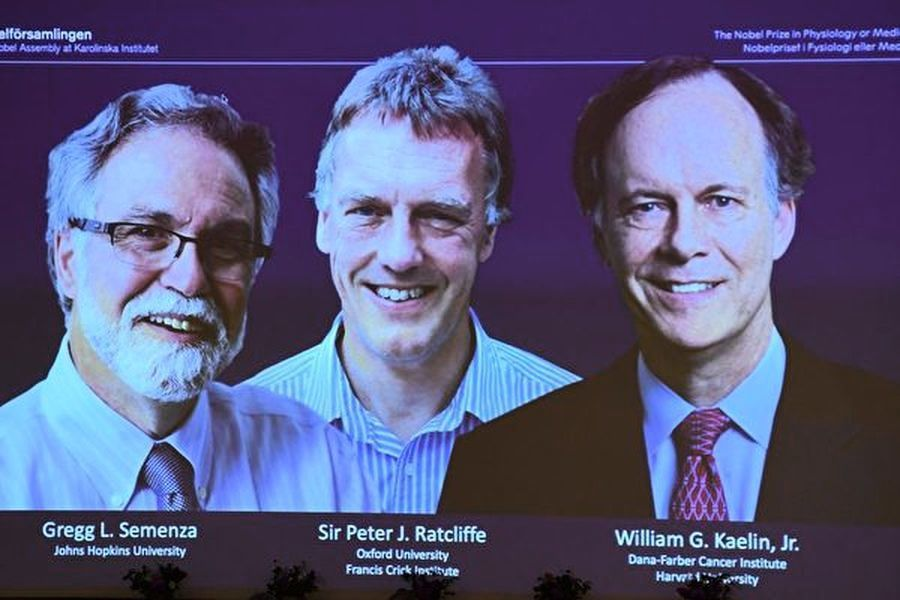 2019諾貝爾醫學獎揭曉 英美3學者獲殊榮