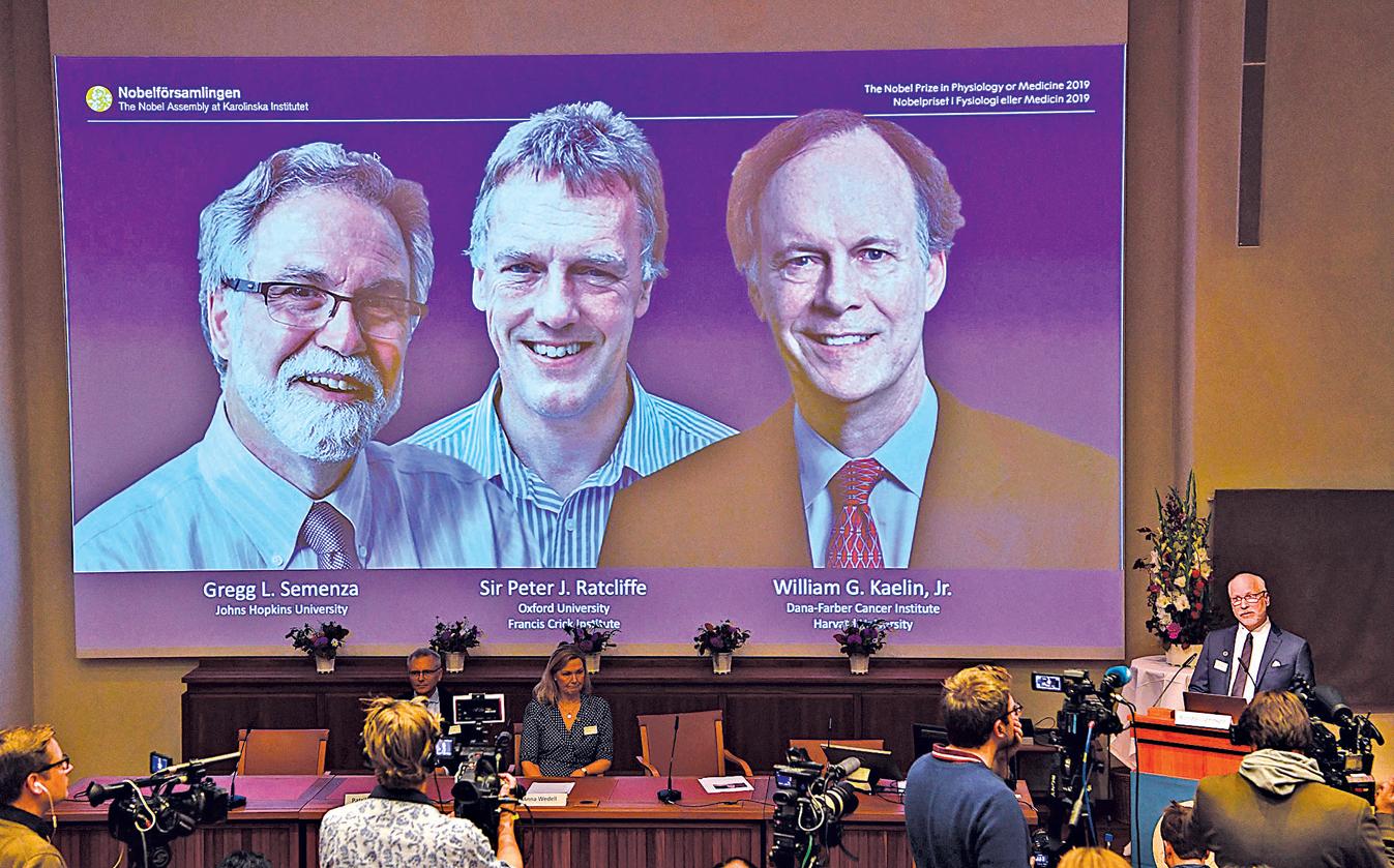 2019年醫學獎獲得者是美國哈佛醫學院教授凱林(左)、英國分子生物學家雷克里夫(中)和美國約翰霍普金斯的醫學教授塞門扎(右)。(Getty Images)