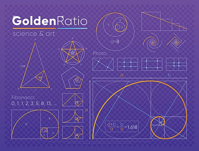 黃金分割比例示意圖。(Shutter Stock)
