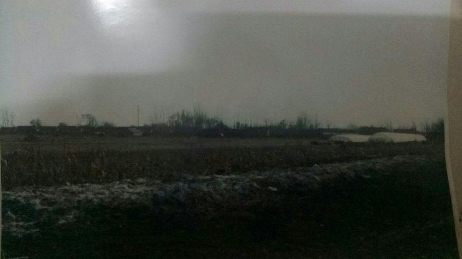 2018年10月,遼寧鞍山市台安縣黃沙坨鎮政府在鯰魚泡村的農田掩埋1,400頭病豬,造成該村水污染,村民討說法近一年無果。圖為埋死豬的田地。(受訪者提供)