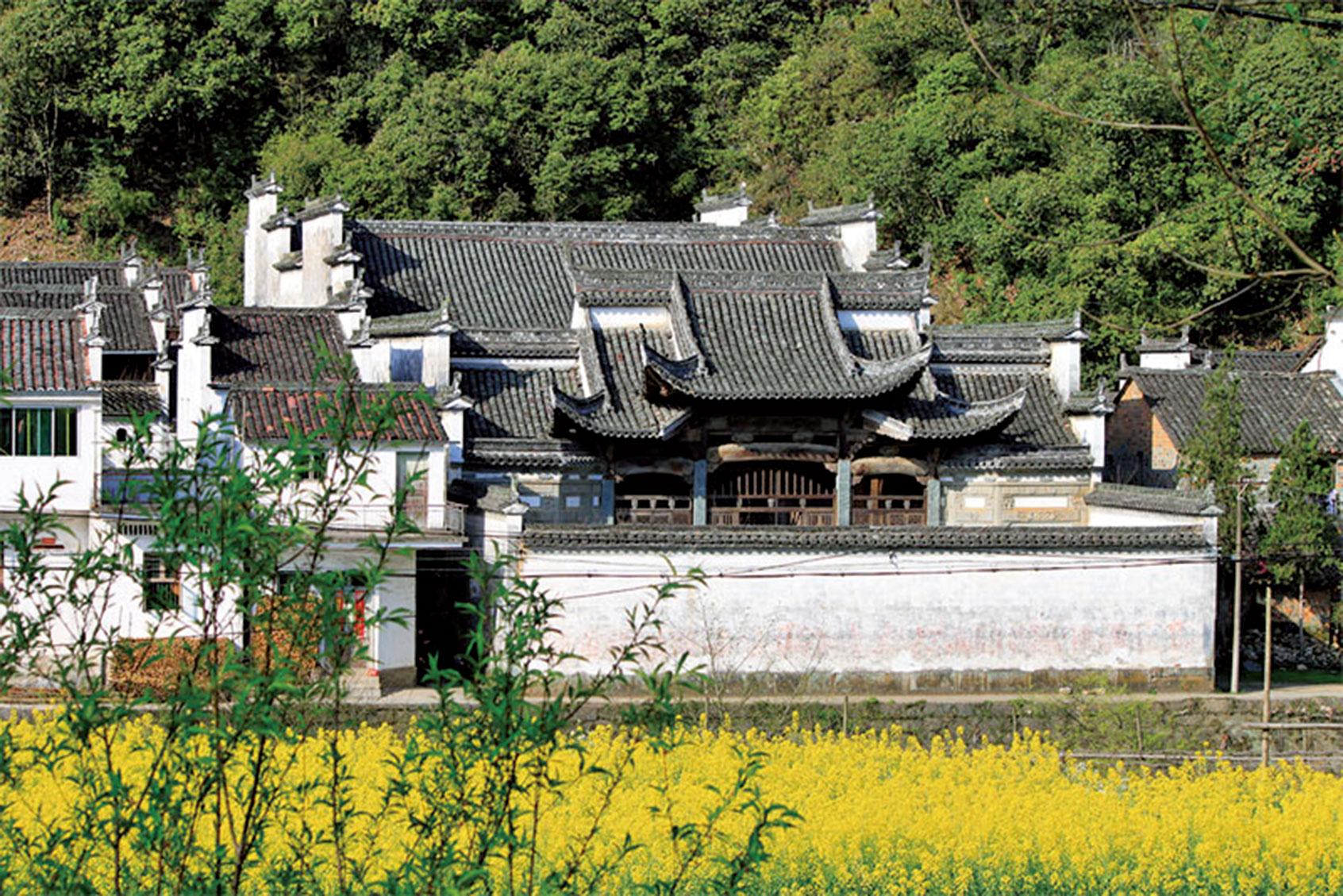 黑瓦白牆,屋後竹林,門前小河,走過小橋,是大片黃燦燦的油菜花田……(Zhangzhugang/維基百科)