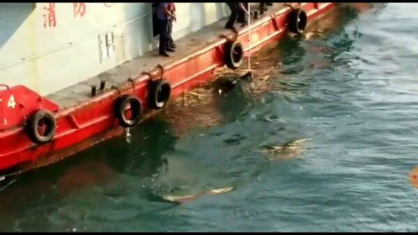 8日下午,海怡半島附近海面上,再次發現黑衣女性浮屍。對此,香港眾志秘書長黃之鋒質疑案情不單純。(影片截圖)