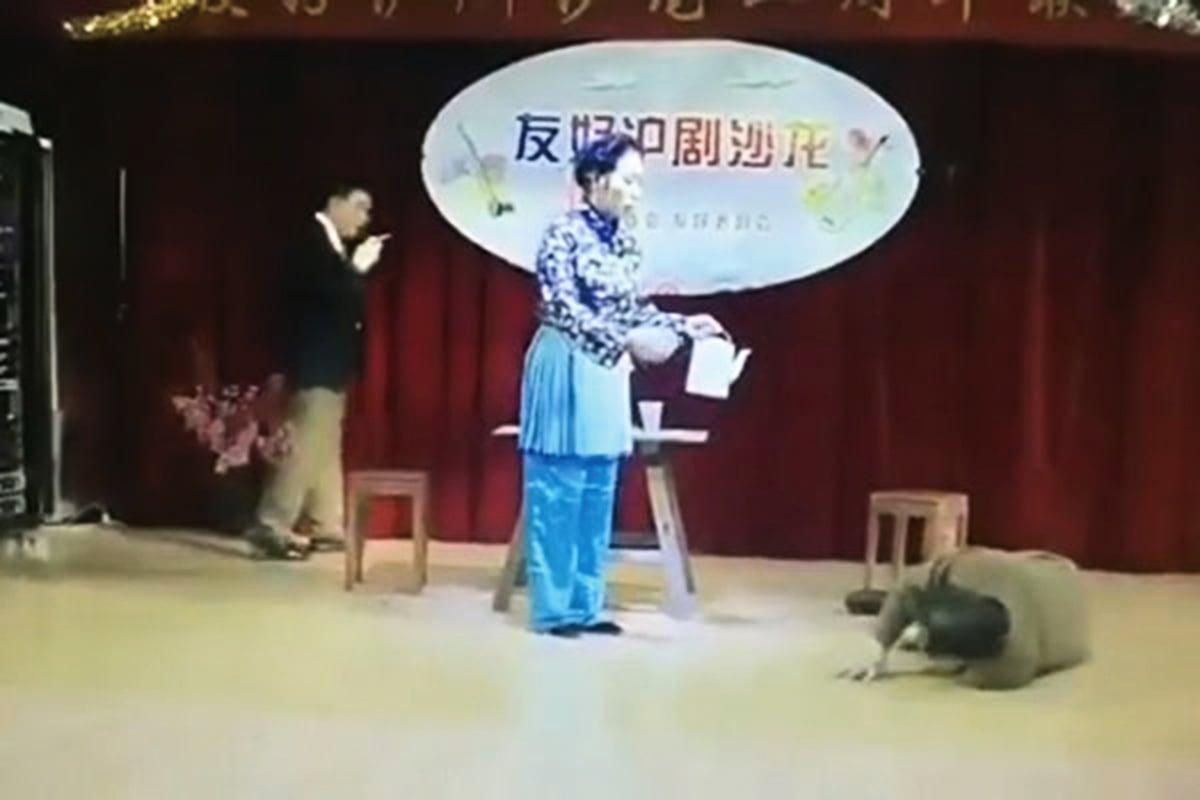 2019年1月9日上海老知青舉辦樣板戲《沙家浜》演出,「胡傳魁」突發腦梗倒地。(視頻截圖)