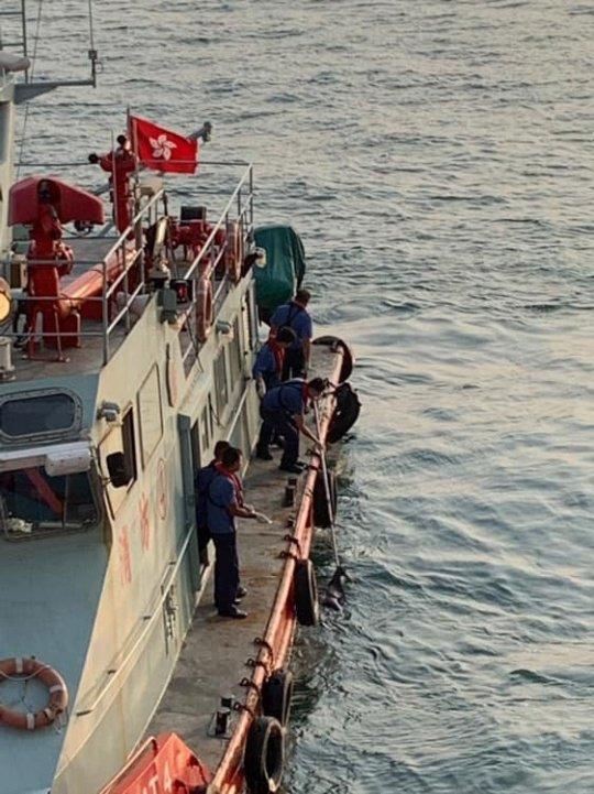 近期,香港浮屍,墜樓等自殺個案突增。10月8日下午約5時左右,在海怡對出海面發現浮屍,黑衭黑鞋疑似女性。(網絡圖片)