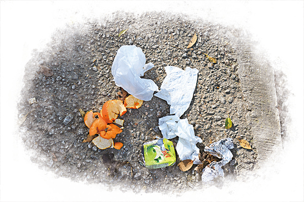 「清徑」隊員在清理山徑過程中的常見的四種垃圾:紙巾、果皮、紙包飲品盒、錫紙。