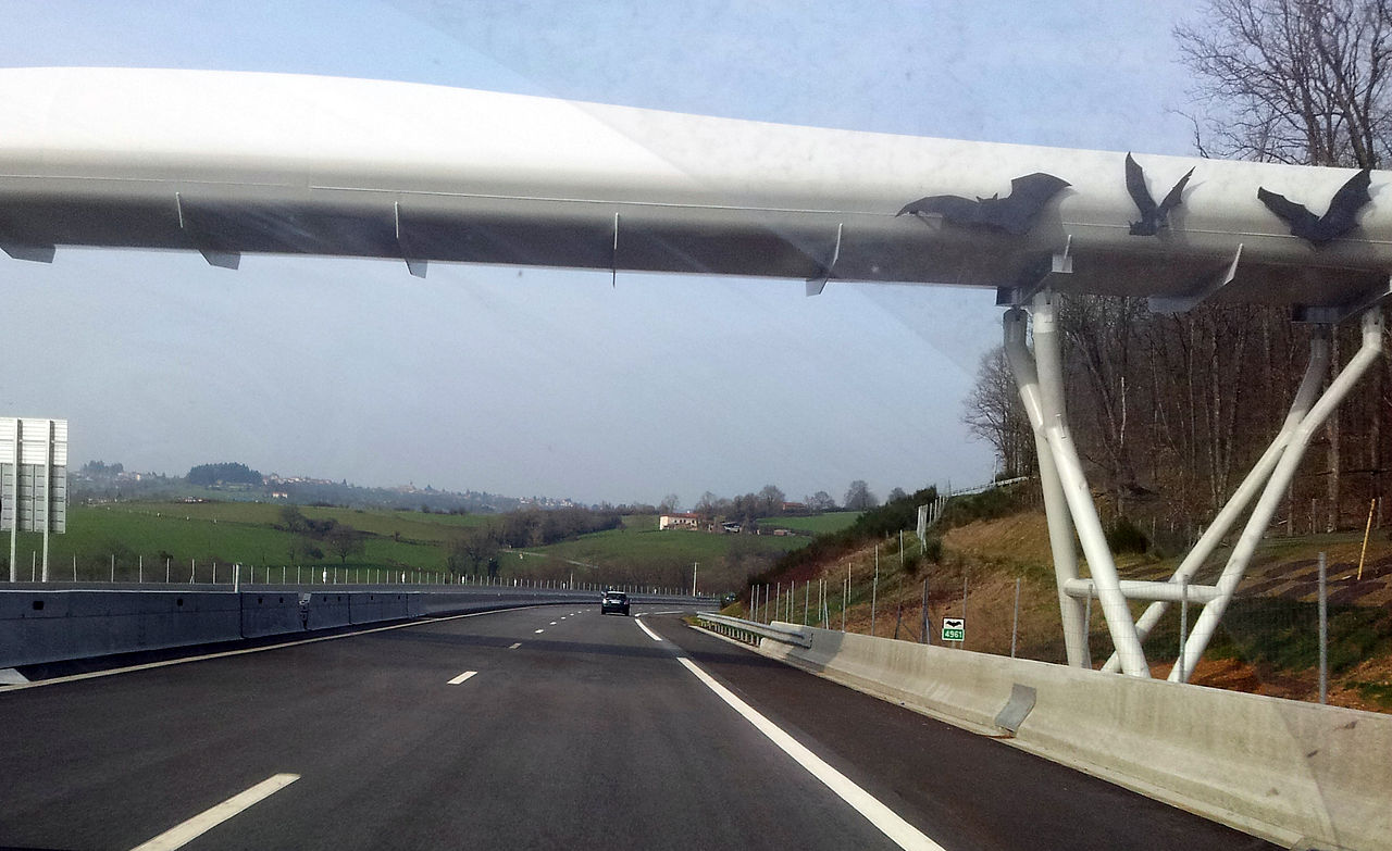 在法國盧瓦爾河,巴爾比尼附近的A89蝙蝠橋。(Wikimedia commons)