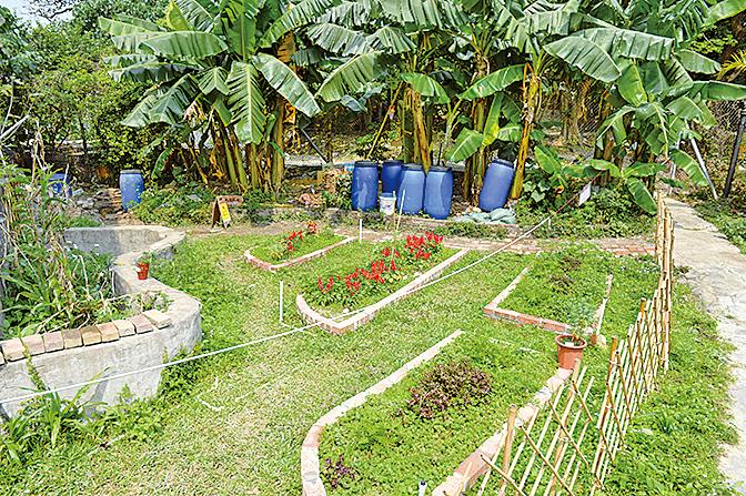 校舍右側設有「生態園」,種植不同的作物,供學生學習與體驗種植過程。