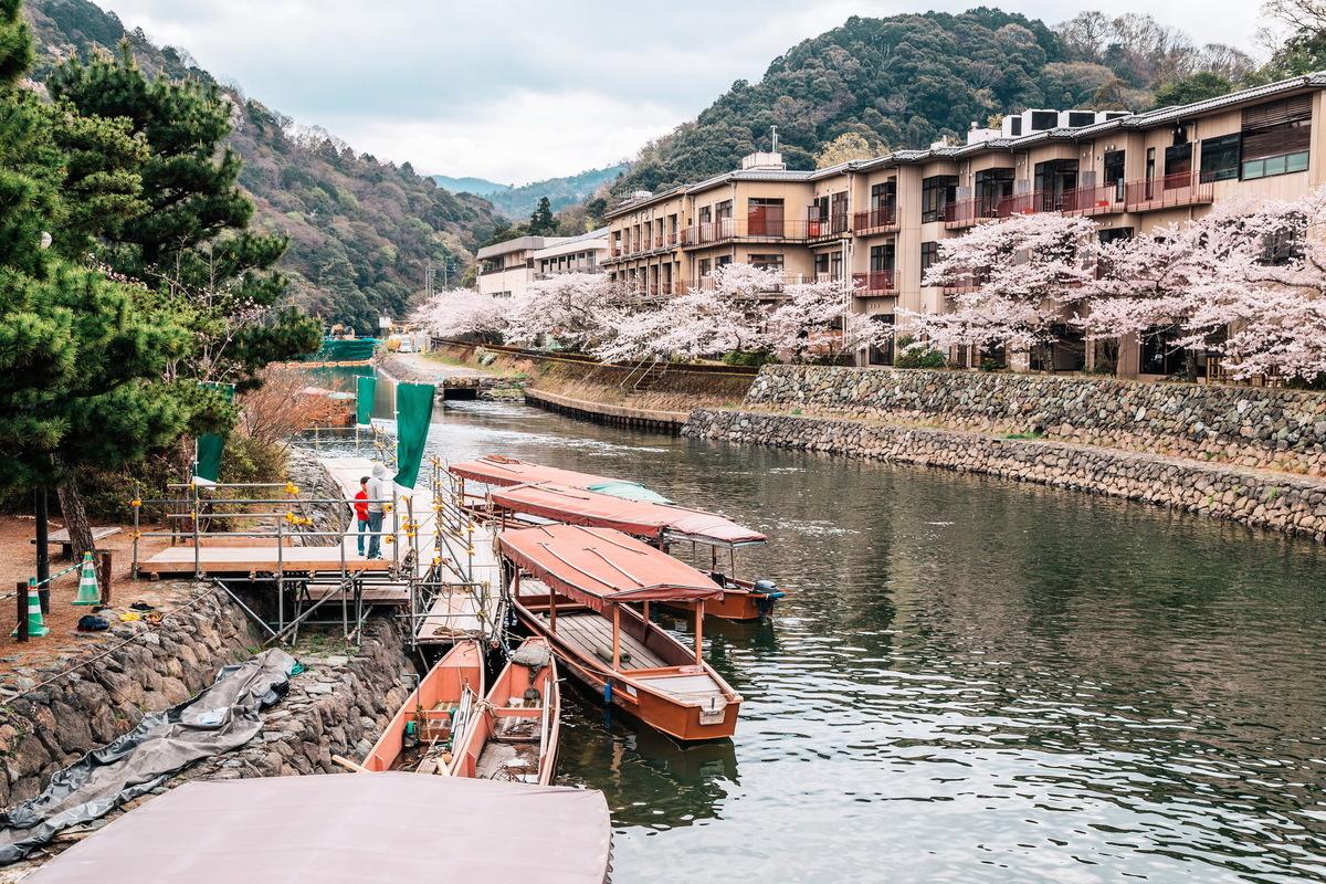 宇治川沿岸是賞櫻最佳景點。(Fotolia)