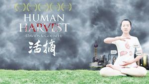 《活摘》中文版全球首映  關注中國非法器官移植