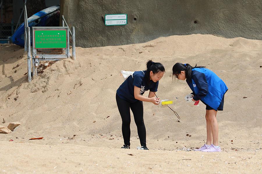 義工在海灘收集微塑膠。(陳仲明/大紀元)