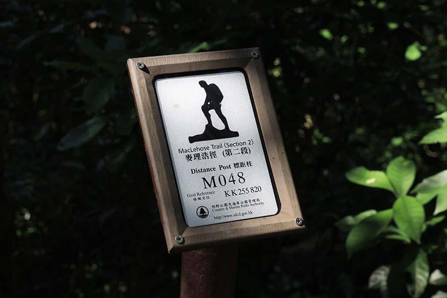 麥理浩徑上設有200枝標距柱,約每500米設一枝。(陳仲明/大紀元)