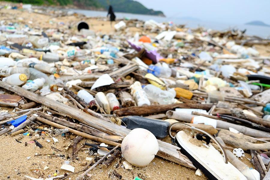 大嶼山最西南分流及狗嶺涌沙灘同樣污染嚴重