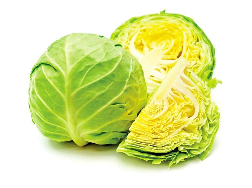 椰菜不只美味 能養胃 抗癌 補骨