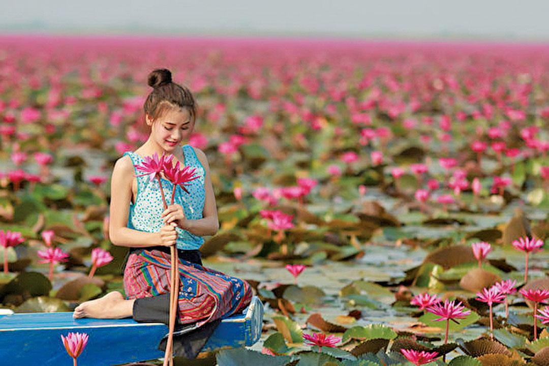 坐在蓮花池的女孩。(fotolia)