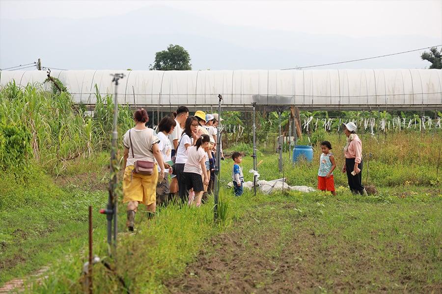 位於元朗錦田大江埔村的歐羅有機農場參觀活動。(陳仲明/大紀元)