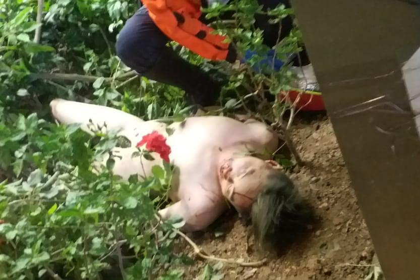 今日(7日)傍晚市民電話爆料,在旺角登打士街發現一具男屍。(林女士提供)