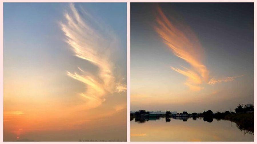 香港天空出現巨形「鳳凰雲」,在夕陽的映照下猶如浴火的鳳凰。港人激讚這是「香港守護神」。(fb「on9仔女同盟會_(on9限定)」圖片)