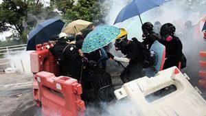 香港教協痛批林鄭 籲學生不必冒險上學