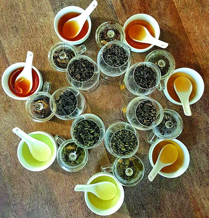 要學習茶葉的知識,可先從了解茶葉的發酵和烘焙程度開始。