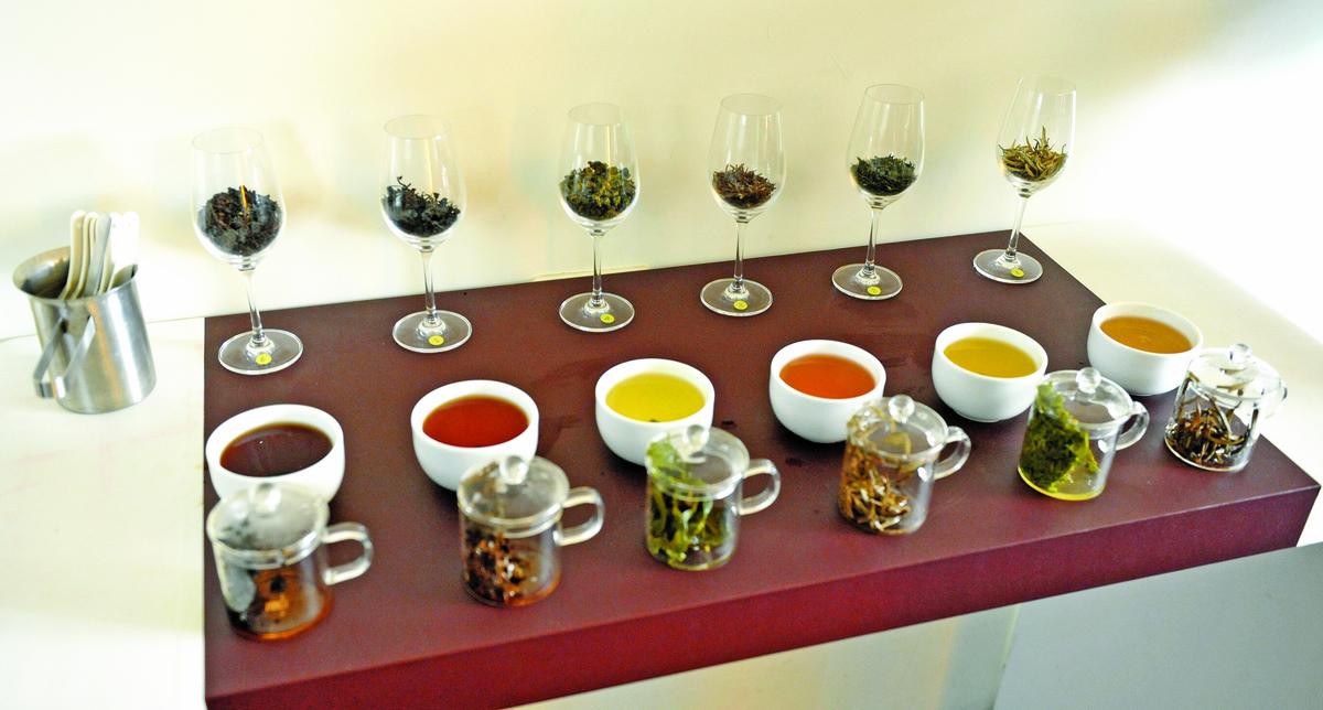 進入講茶課程後,從品評基礎六大類茶為起點。