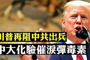 【拍案驚奇】特朗普阻共軍入港 人大干預香港司法