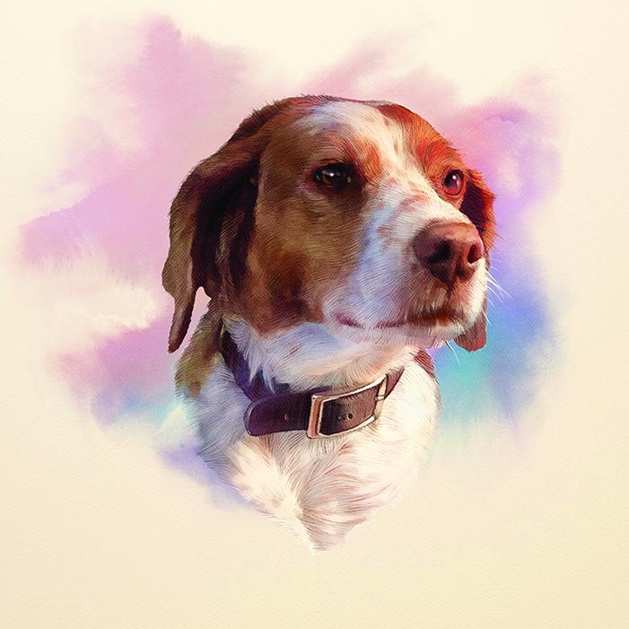 【長篇小說】狗狗的旅程㊃