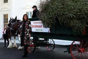 美國第一夫人在白宮迎接聖誕樹
