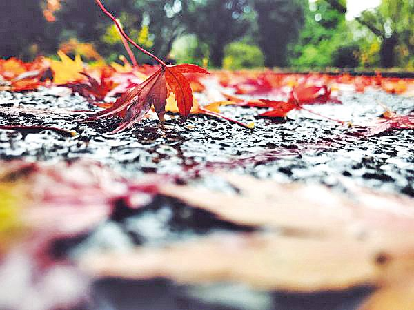 雨,其實是一種心情。(Unsplash)