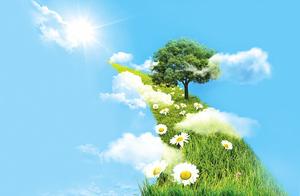 【感悟人生】因禍得福 迎接生命的春天