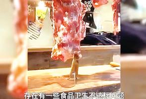 汕頭牛肉火鍋店 老鼠在操作台啃食
