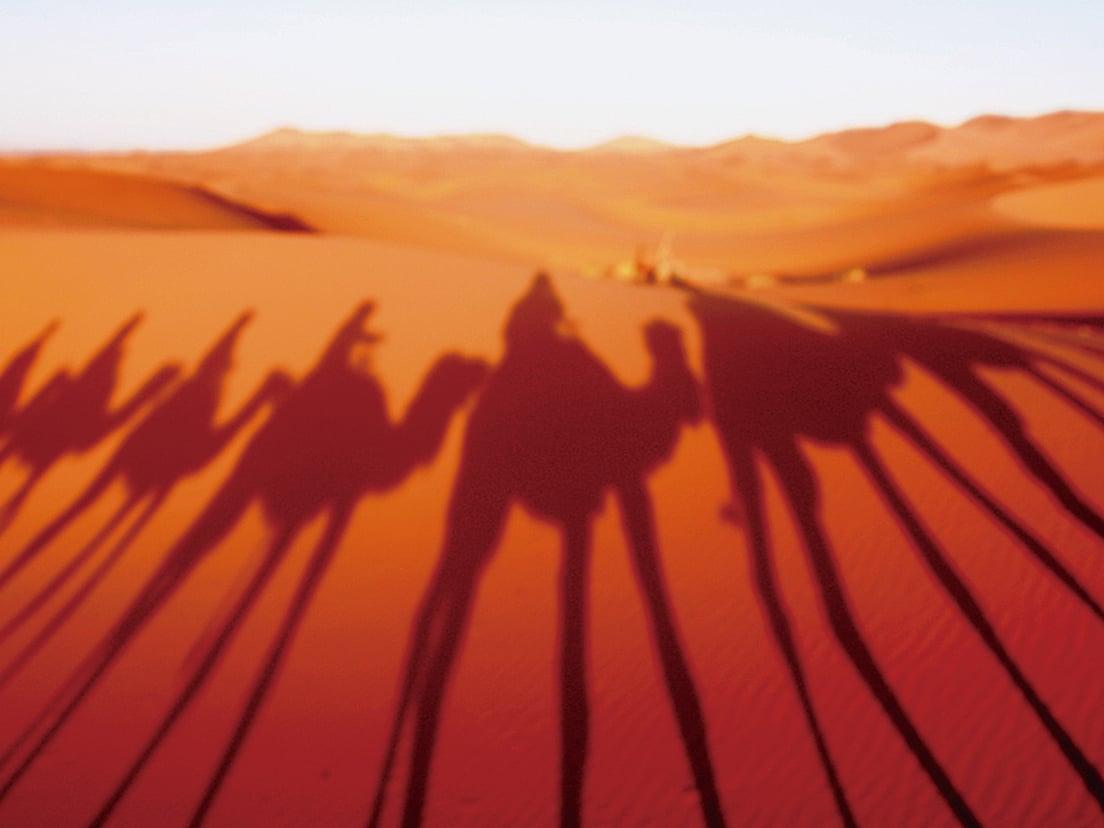 騎駱駝漫遊撒哈拉沙漠。