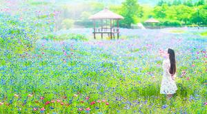 乘坐仁川地鐵 享受如夢似幻的仁川之旅 探訪仁川五大景點 (二)