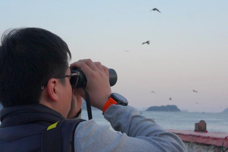 「香港麻鷹公眾普查」活動期間,參加者觀察並統計麻鷹數目。每年12月至2月為最佳賞鷹季節,高峰期有過千隻麻鷹於本港出沒。(香港觀鳥會提供)