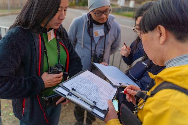 麻鷹公眾普查為公民科學活動,參加者不需擁有專業知識都可以參與,普查結果有助日後監察及統計香港麻鷹數量。(香港觀鳥會提供)