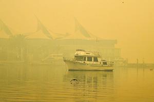 有毒煙霾再包圍悉尼 各地警報器大響
