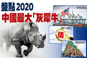 盤點2020年中國最大「灰犀牛」